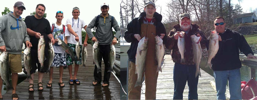 Pullin drag striper fishing guide charters smith for Smith mountain lake fishing report