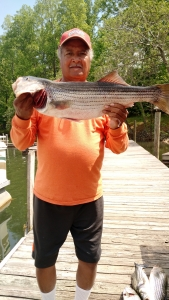 Smith Mountain Lake fishing guide.jpg