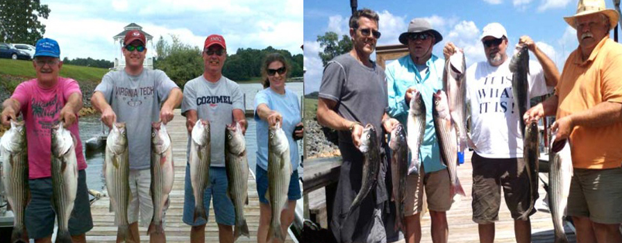 Smith Mountain Lake Striper Guides